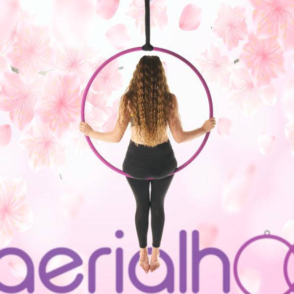 Aerial hoop lyra circus pink