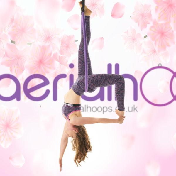 Aerial hoop lyra circus purple Back Balance